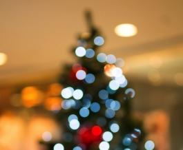 Navidad saludable Image: stock foto/freedigitalphotos.net