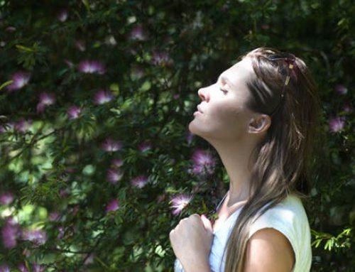 Beneficios de meditar y cómo incorporarlo en tu día a día